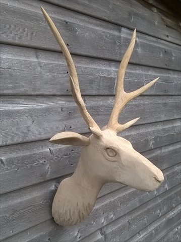 anthony-hammond-stags-head-carving-made-from-oak-and-sycamore-2