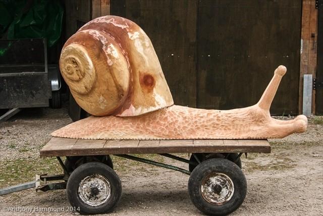 38_-_wolseley_snail-2