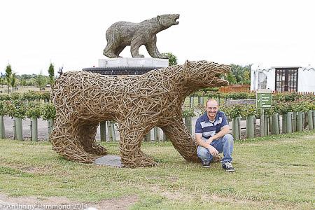 046-anthony_bear-2