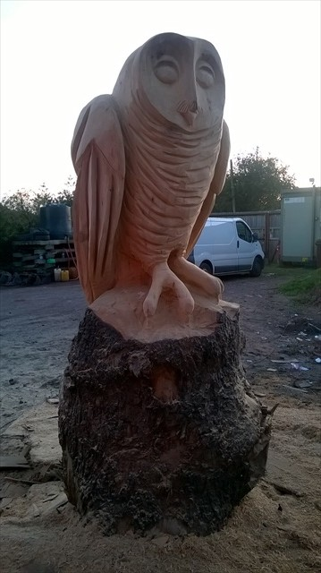 anthony-hammond-owl-carving-at-holington