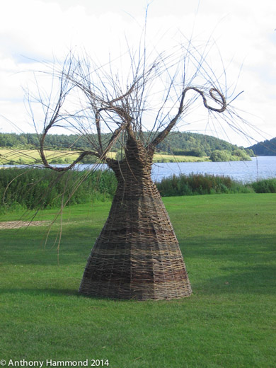 010-woven_willow_tree_1_-2-2