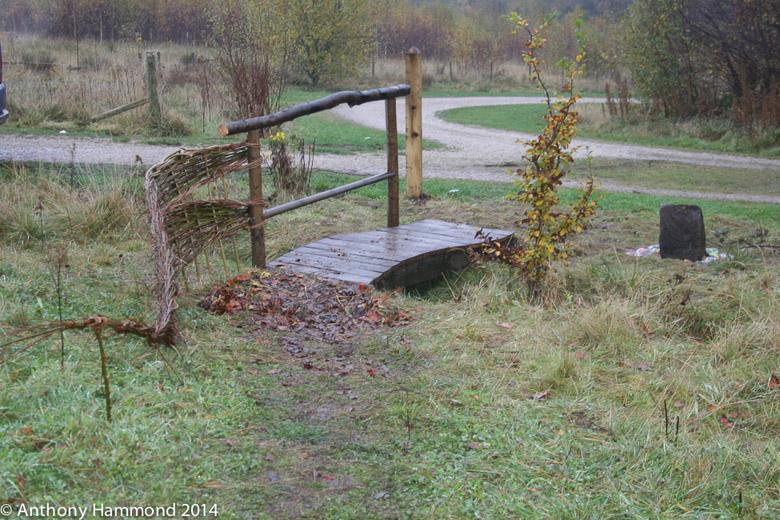 035-apedale_art_trail_in_hornbeams_wood_2_-2