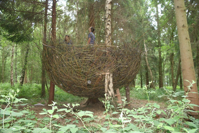 anthony-hammond-willow-nest-2