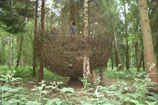 anthony-hammond-willow-nest-2