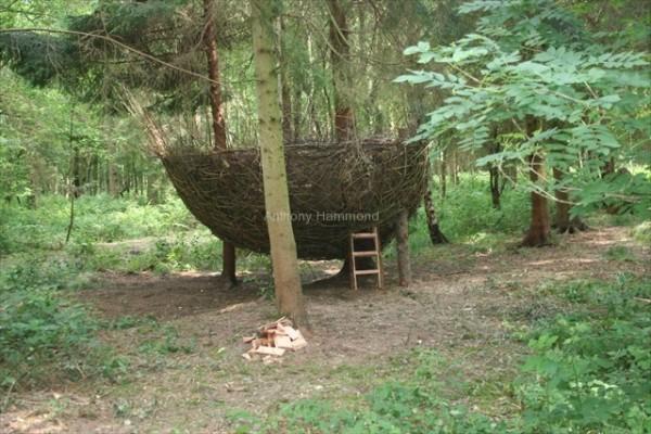 anthony-hammond-willow-birdnest-2